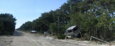 2012年5月の新舞子浜(写真提供:NPO法人いわきの森に親しむ会)